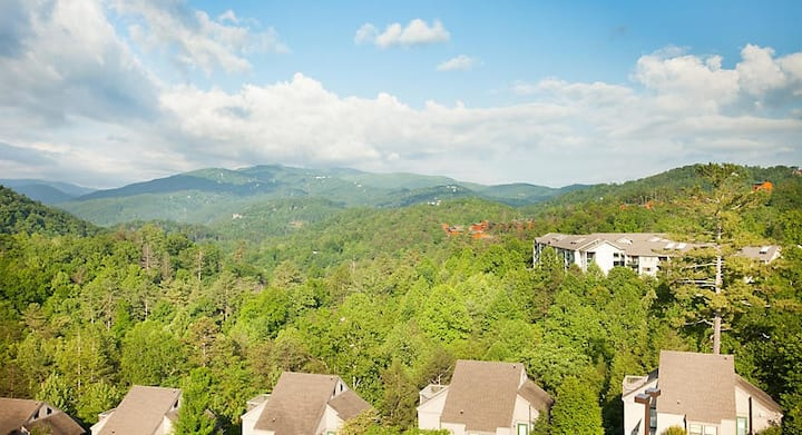 Gatlinburg 1 BDRM VILLA FIREPLACE PRIVATE ENTRANCE