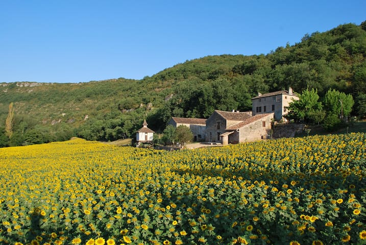 L'Hermitage en Occitanie