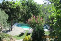 Onze prachtige tuin met zwembad