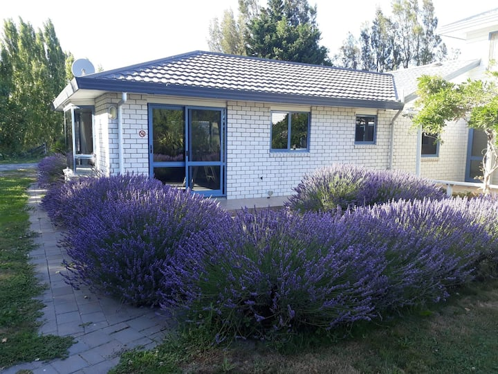Lavendar and vines studio