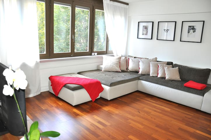 large, central, bright flat - Lucern - Byt