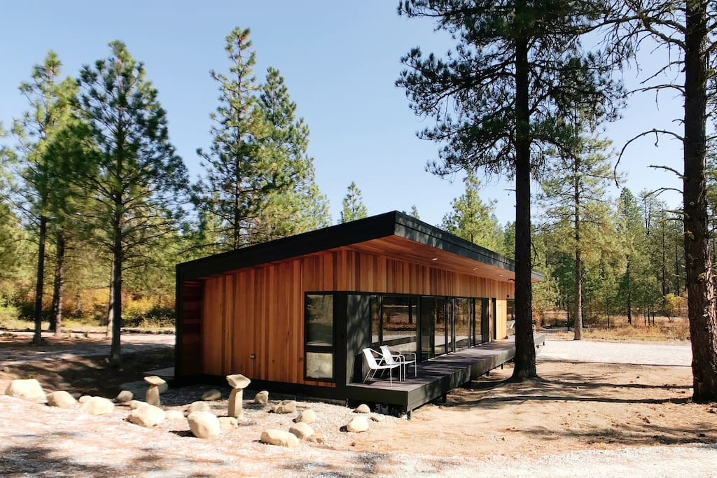 1000sf home respectfully placed amongst large Ponderosa Pines.