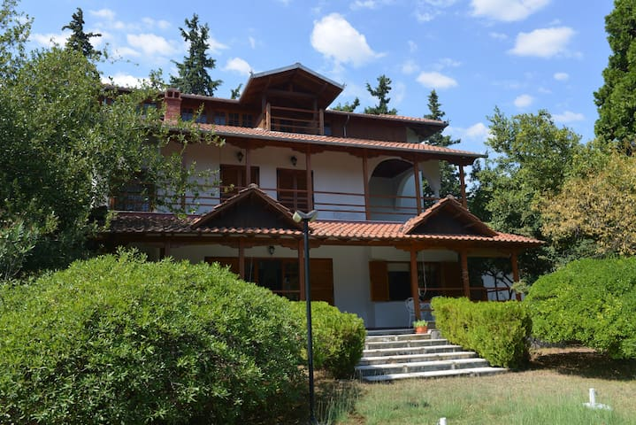 Villa Vanda - ideal for family vacations! - Leptokarya - 別荘