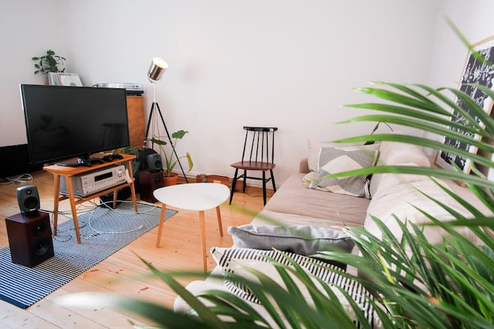 Cosy studio with great location