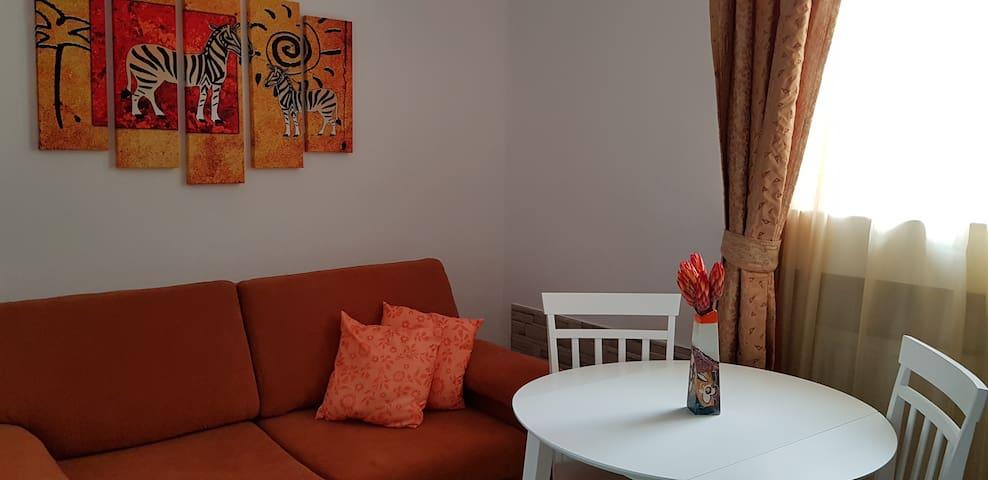 Welcome@Colorful University Copou 40m² Apartment