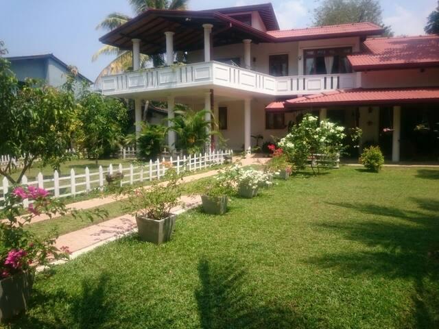 A real taste of Sri Lanka! - Boralesgamuwa
