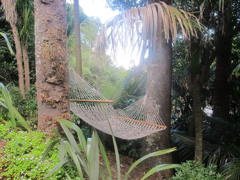 Hear the ocean from the bush hammock