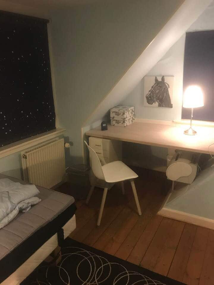 Single room - close to nature but also the city