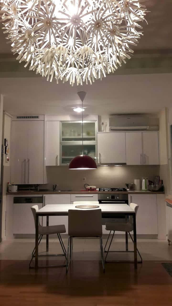New modern full of light apartment