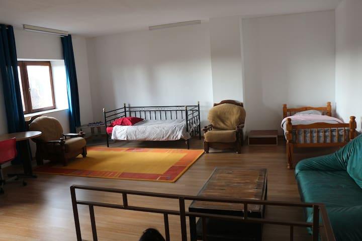 Une Vaste chambre  de 42m² avec 2 fenêtres sur la Loire.