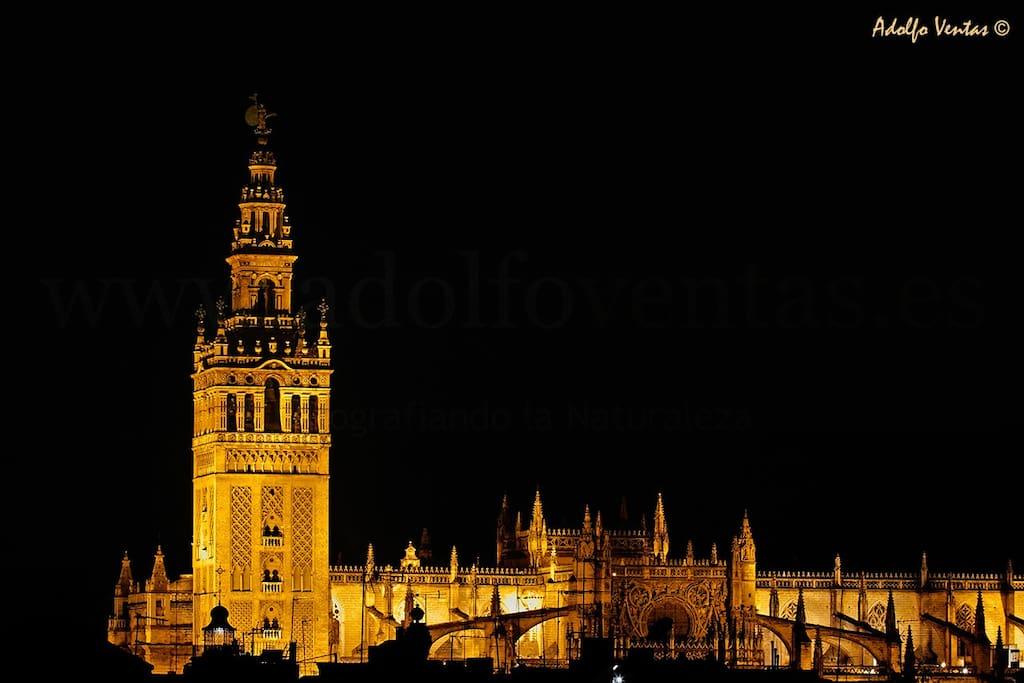 Catedral de Sevilla, de Noche.