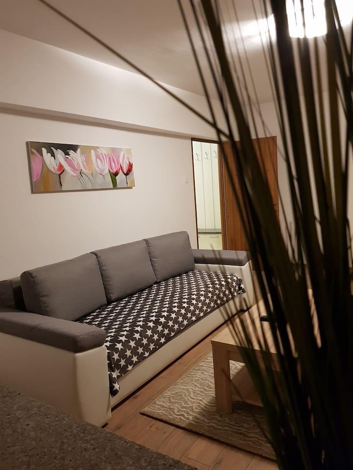 Travel Homzzz New Apartment