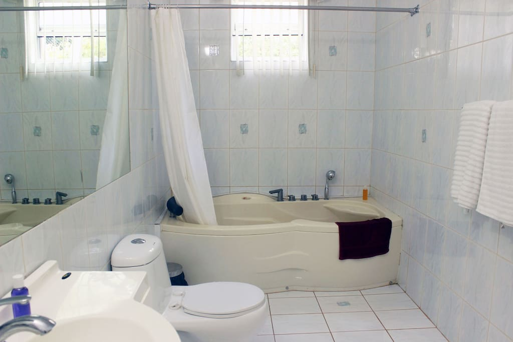 Jacuzzi bathtub and shower in private bathroom