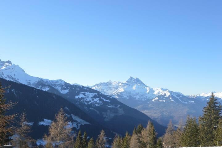 Little Swiss Haven