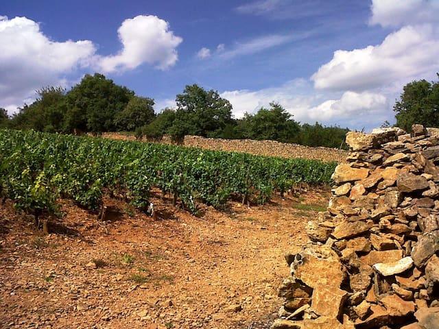 Hâvre de paix en Beaujolais - Cogny - Casa