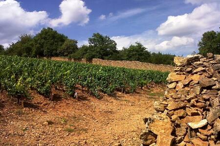 Hâvre de paix en Beaujolais - Cogny