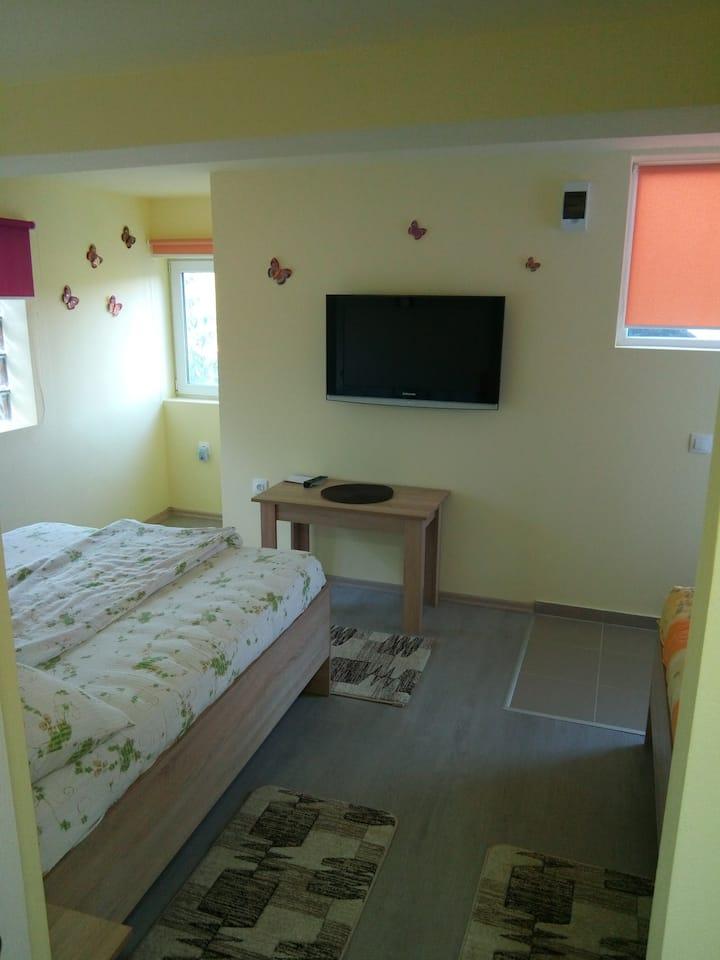 Casa Molnos2