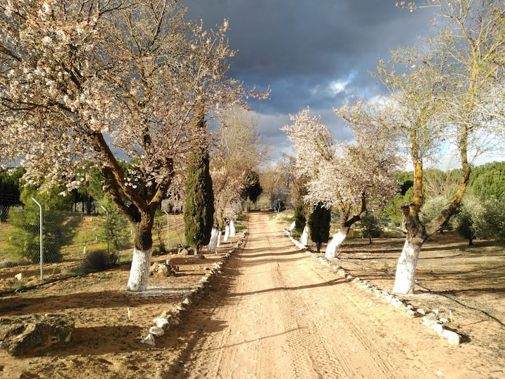 La Rinconada de Las Tablas, la Toscana manchega