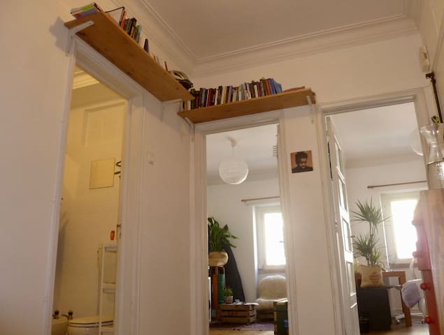 The hall with our overhead bookshelves