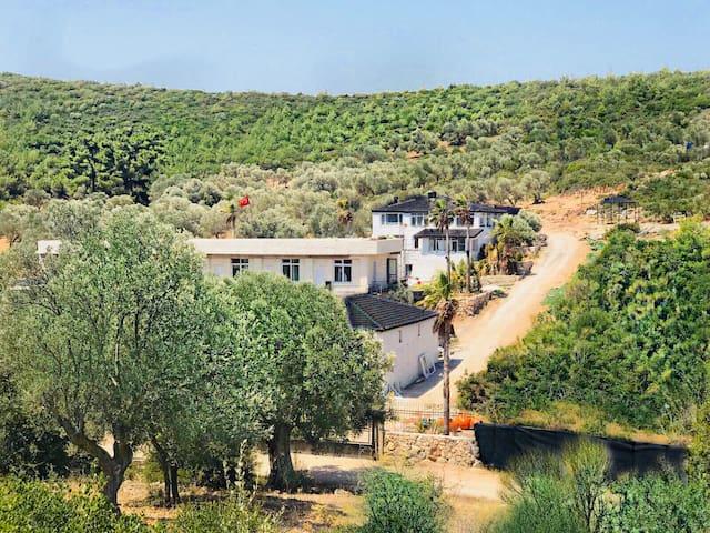 Exclusive Luxury Millionswood Villa