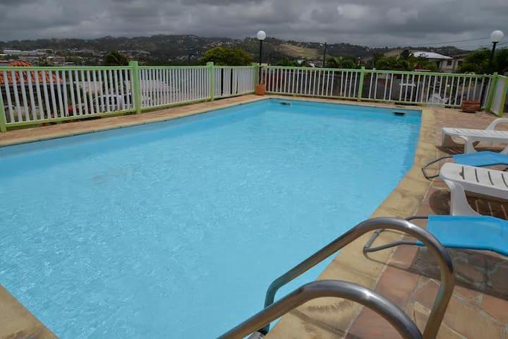 Villa avec piscine: Nohanic - Le Robert - Huis