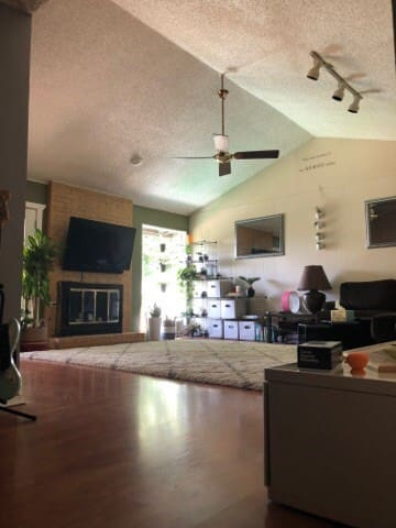 Big open space with private yoga available in living room or back yard
