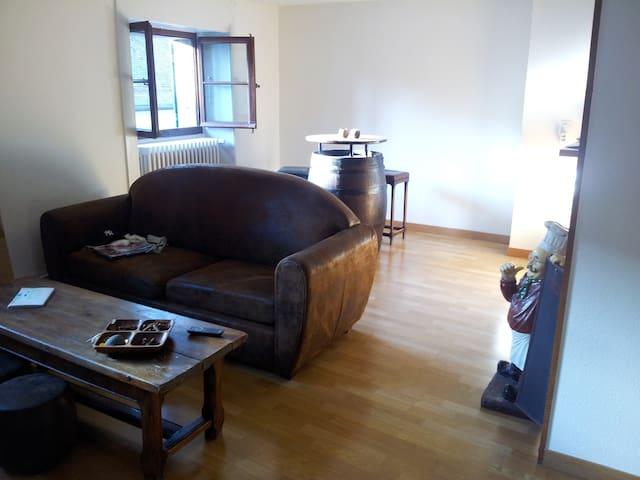 Nice flat in Nyon (old city)! Lake & mountains!