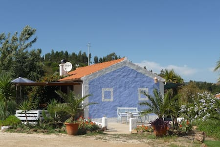 BLUE LAR