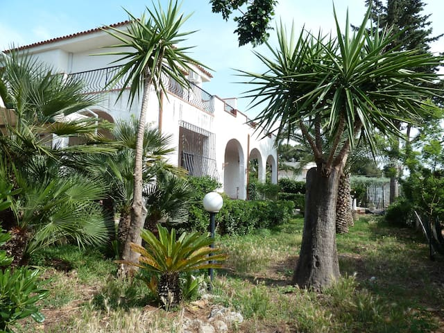 Maison Aralù - Terrasini - Huis