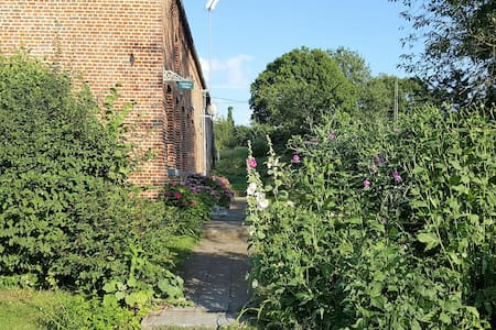 Les Mout'ânes chambre Cardamine - Avesnes-sur-Helpe - Bed & Breakfast