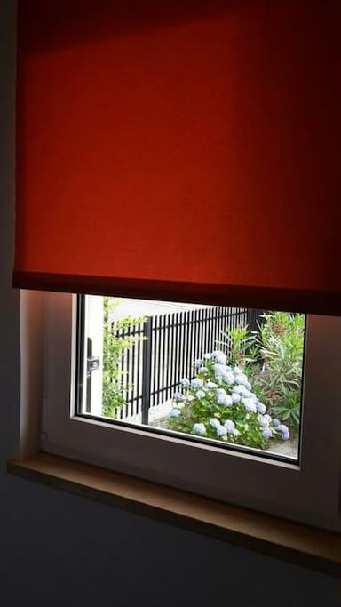 pogled u cvjetnjak ispred apartmana