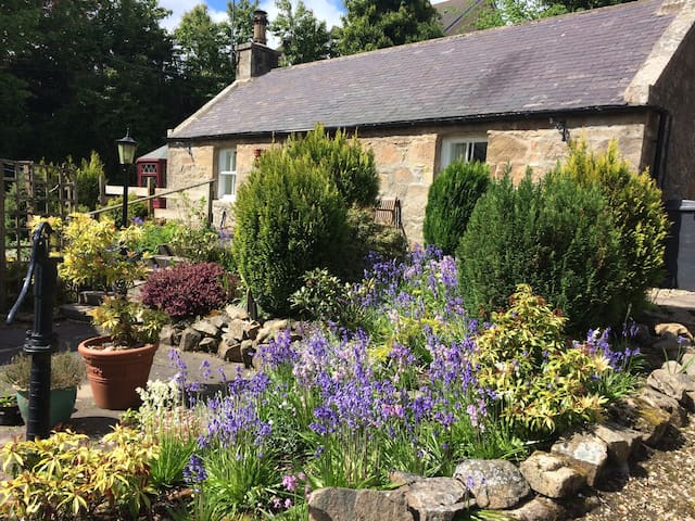 Charming self-catering holiday cottage