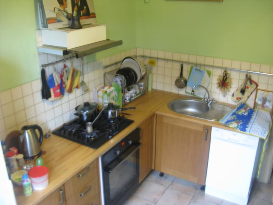 gas stove and electric oven, dishwasher and spacious fridge with freezer