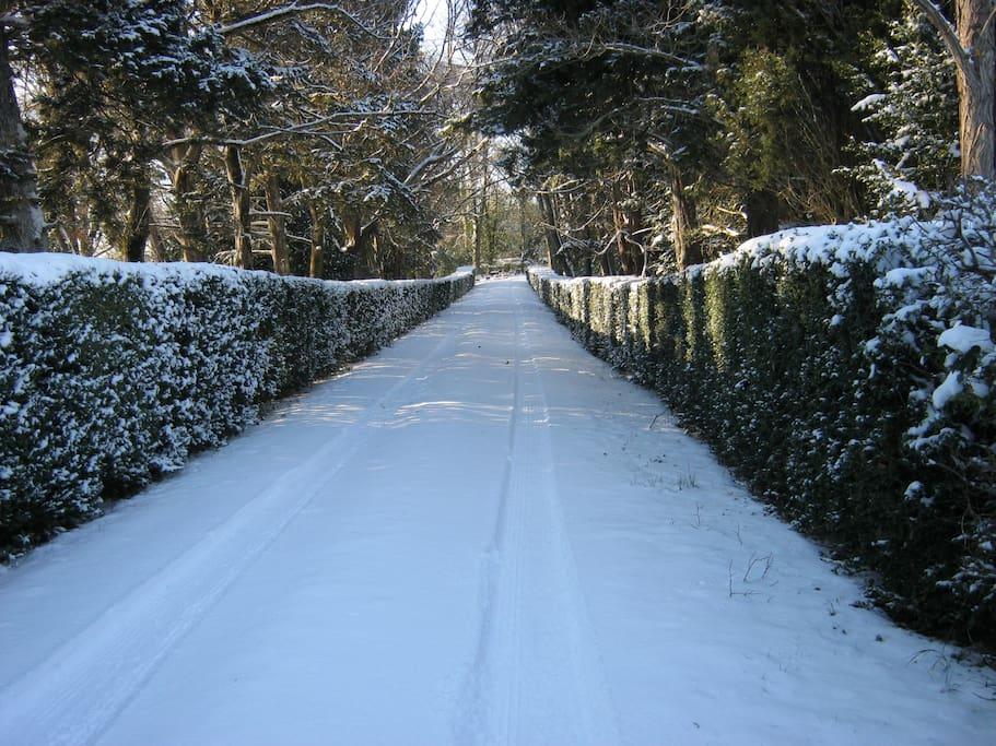 Entrée l'hiver