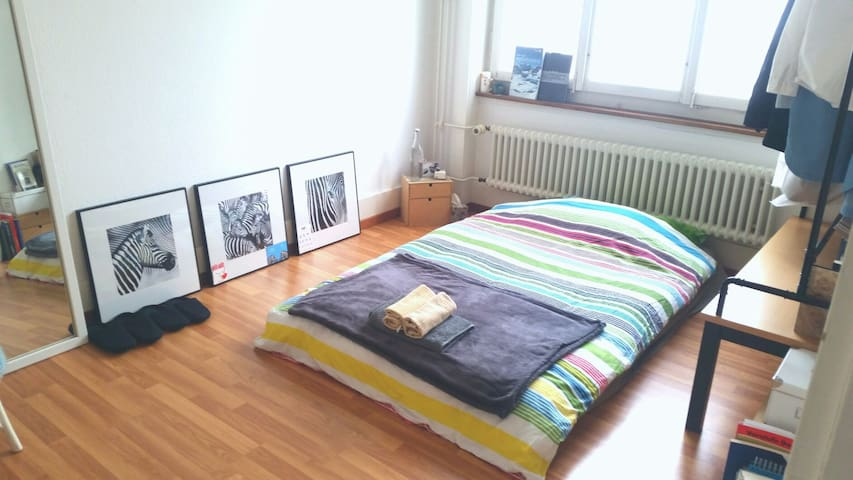 Cosy Room next to station and FHNW - Olten - Huoneisto