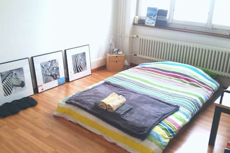 Cosy Room next to station and FHNW - Olten - Wohnung