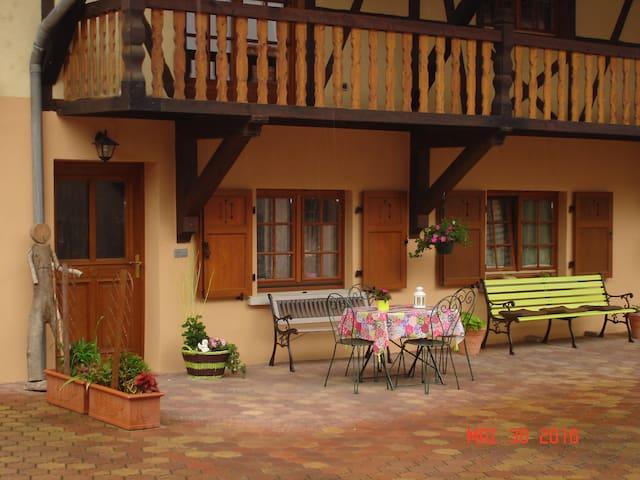 Gîte rural cosy au centre de l'Alsace - Artolsheim - Dům
