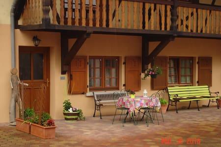 Gîte rural cosy au centre de l'Alsace - Artolsheim - Casa