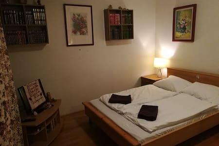 Modernes Zimmer nahe Hauptbahnhof - 維也納 - 公寓
