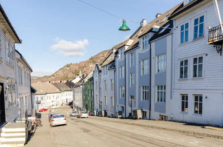 Cozy and bright wooden neighb. 2BR - Bergen - Byt