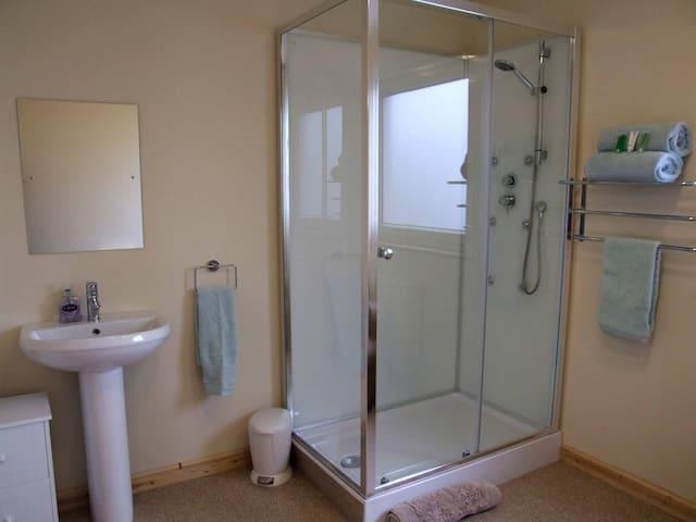 Family room ensuite bathroom