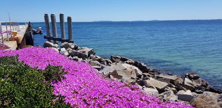Flinders Island Getaway! 4BR Beachfront Whitemark.