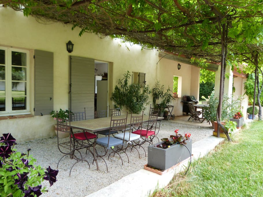 sous la glycine //under the wisteria