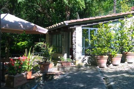 Casa vacanze 'Lo Scoiattolo' - Querciola - Leilighet