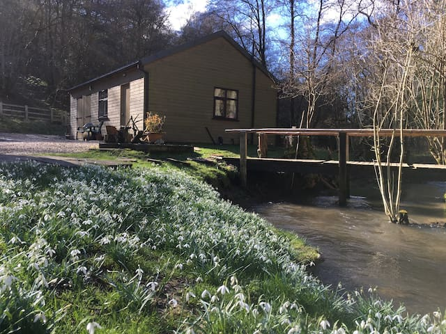 Secret valley cottage, close to Rievaulx Abbey - Old Byland - 旅舍