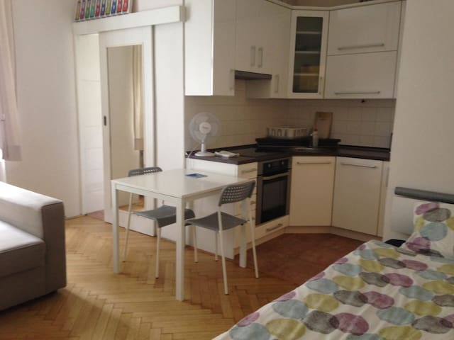 Quiet apartment on the riverbank - Prague - Apartmen