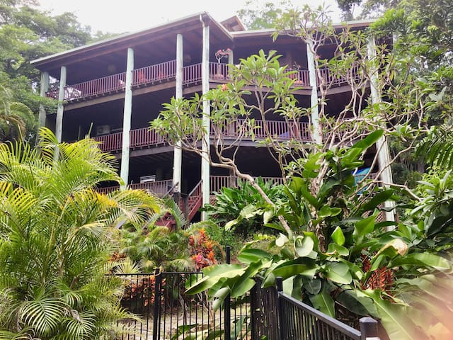 Wow-factor Timber Pole Home, Sea/Rainforest Views