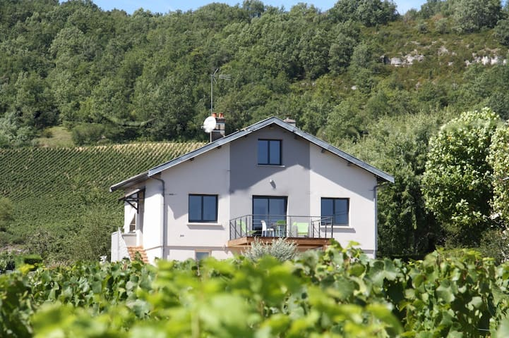 SWEET HOME DES VIGNES RULLY - Rully - House