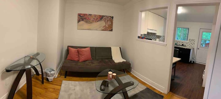 Appartement beau et calme à Longueuil (Felisa)