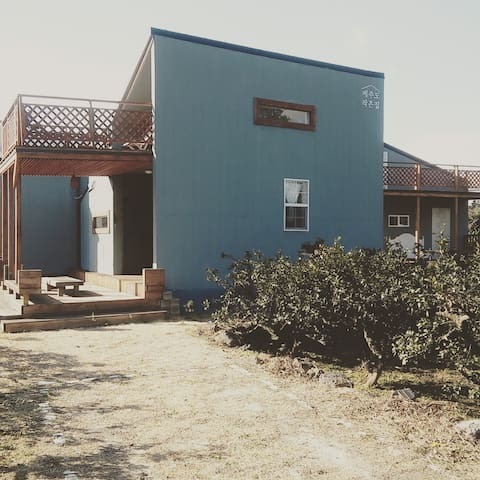 Rent a house in Tangerine orchard - Seogwipo-si